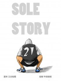 SOLE STORY